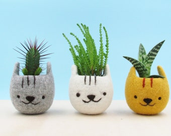 Planter with face, Gardening gift, Girlfriend gift, Felt succulent planter, Neko Atsume, Kitty collector, Kawaii cat gift, Set of three