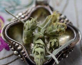 Herbal Tea, Unique Shepherds Tea, Wild Greek Mountain Tea from Mountain Parnonas, tsai tou vounou, Sparta Greece 80gr