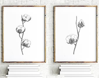 Set of 2 Cotton Flowers, Cotton Bolls Minimalist Painting, Abstract Black Home Decor Cotton Ball Drawing, Floral Wall Art, Flowers art print