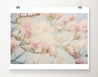 pink magnolia tree photograph pink magnolia photograph pink flower photograph pink magnolia print spring photograph pastel home decor