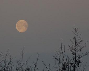 Snow Moon, February Moon photo, waning gibbous setting moon, moonset, winter dawn sky, grey sky with moon, lunar photography, la lune, Luna