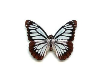 small paper butterfly embellishments