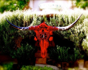 "SALE - Artistic Longhorn Skull - Title: ""Warrior Of Passion"" A Texas Longhorn Steer"