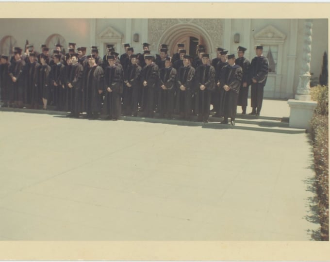 Vintage Snapshot Photo: Graduation, c1970s [85674]