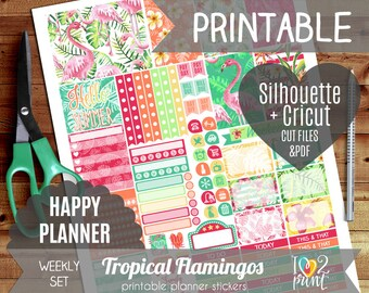 Tropical Flamingos Watercolor Weekly Printable Planner Stickers, Happy Planner Stickers, HP planner, Mambi Stickers, Cut files