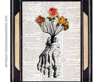 Anatomical FOOT art print wall decor human anatomy bones Orthopedic illustration vintage dictionary book page Roses Tree medical doctor 8x10