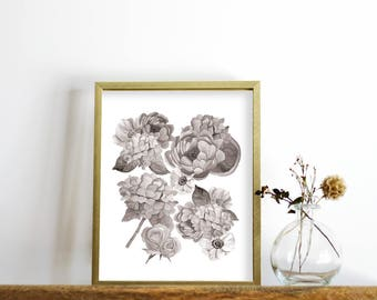 Black and White Print, printable wall art, Peony Print, Floral Print, Watercolor Printable, Botanical Print, Downloadable Flower Art Print