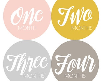 Modern Chic Baby Monthly Stickers, Baby Girl, Monthly Baby Stickers, Monthly Milestone Stickers, Baby Shower Gift, Months 1-12