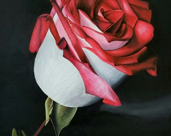 Acrylics on canvas, Rose Painting