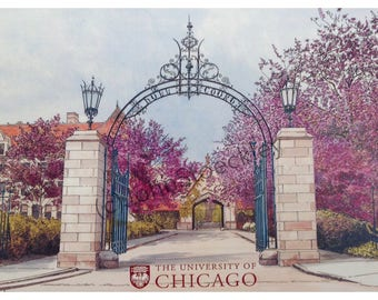 University of Chicago LIMITED EDITION Pen and Ink and Watercolor Art Print Illustration by John Stoeckley - Graduation Gift