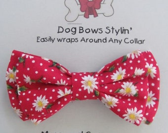 Dog Bow Tie - Dog Bowtie - Daisy Dog Bow Tie - Dog Bow - Cat Bow Tie - Dog Collar Bow