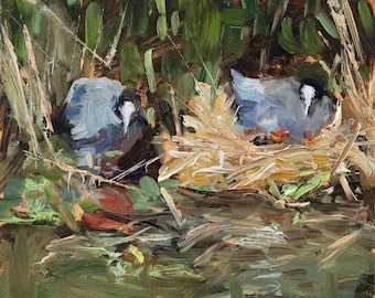"oil painting, ""Baby coots"", 6x6 inch, 15x15 cm, oil on panel, babymeerkoetjes"