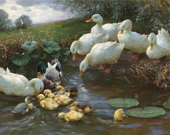 Ducks and Ducklings - Cross stitch pattern pdf format