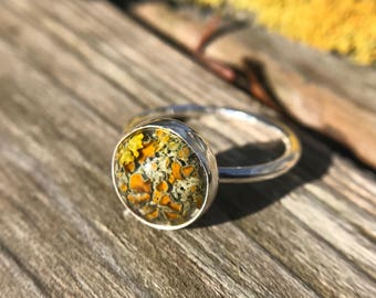 Lichen and resin sterling silver stacker ring size 5.25
