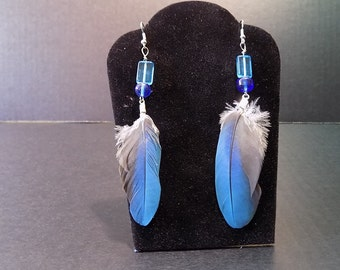 Natural Feather Earrings - Urban Meets Nature