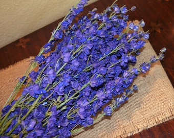 Larkspur, Purple larkspur, Dried larkspure