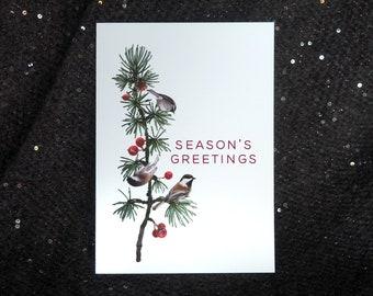 Chickadees Red Berry Tree Season's Greetings Cards - Set of 10, Chickadee Christmas Cards