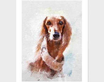 Saluki Art Print, Original Watercolor Dog Portraits 8x10inc - 24x36inc