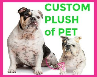 STUFFED ANIMAL of PET - turn photo of pet into stuffed animal, plush from photo, custom pet stuffed animal