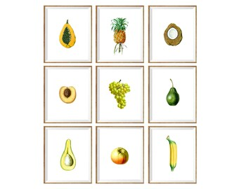 Fruit Art Print SET of 9. apple illustration, avocado drawing, kitchen pineapple print, kitchen banana print,  fruit wall art, fruit drawing