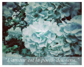 "8 x 10 French Romance Photography, ""Love is the poetry of the Senses"", Hydrangea, Blue, Pastel, French Country,"