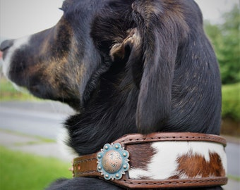 """Leather Dog Collar w/  Cowhide Inlay - Fits 16"""" - 19""""  Neck"""