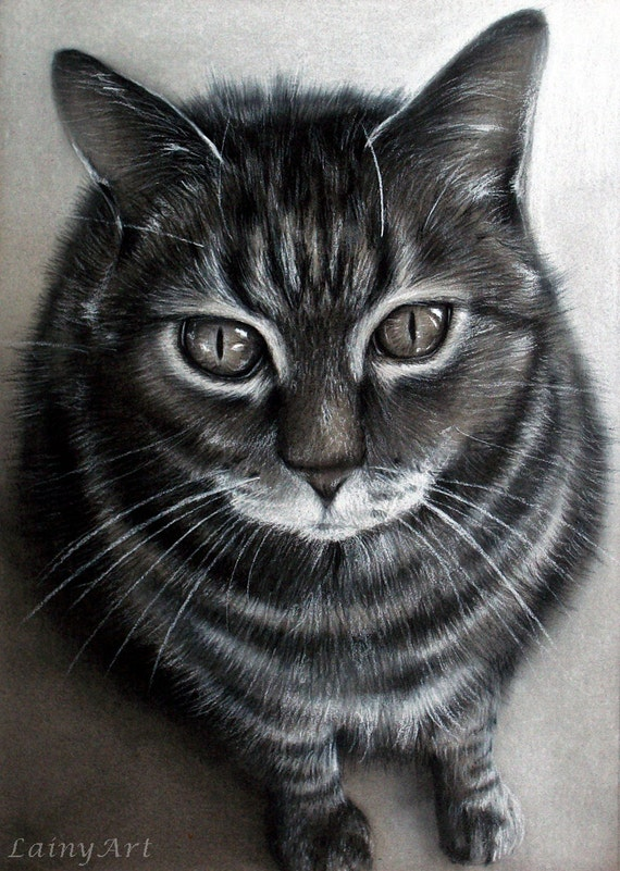 Custom Cat Drawing From Your Photo 8x10 Realistic Hand