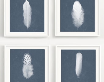 Feather Print Set - 4 Bird feathers with vintage texture. Nature, forest poster, photography