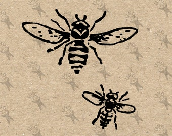 Bee Honeybee vintage image Instant Download black and white Digital printable picture clipart graphic transfer burlap print t-shirt HQ300dpi
