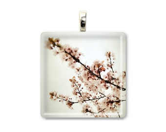 Blossoming - Glass Tile Photo Pendant - Original Photography