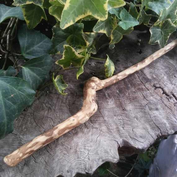 Wood Wand - Avocado Wood - Avocado Wand - Magic Wand - Baguette Magique - Wiccan Wand