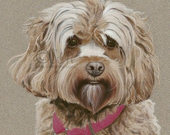 Cockapoo Print from original gouache painting