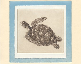"""SEA TURTLE,   8"""" x 8"""" Art Print on 80lb fine art paper from handprinted intaglio etching and monoprint"""