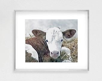 Calf Print, Baby Cow Print, Farm Animal Print, Nursery Farm Animal, Nursery Decor, Printable Poster, Large Wall Art, Digital Download