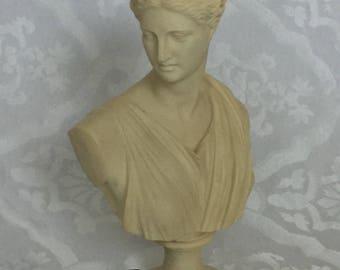 Greek Bust Artemis