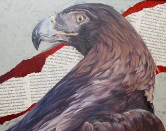 """Golden Eagle Article: Oil Paint on Board, 10"""" x 8"""", Wildlife Art by Joel Kratter"""