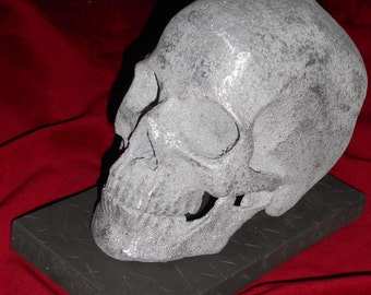 Human skull copy  1:1   white metal, wood base.