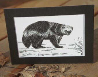 PRINT: Wolverine (Gulo gulo) - 4x6 art print - matted for 5x7 frame