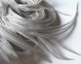 SILVERY GRAY Feathers, Gray Rooster Feathers