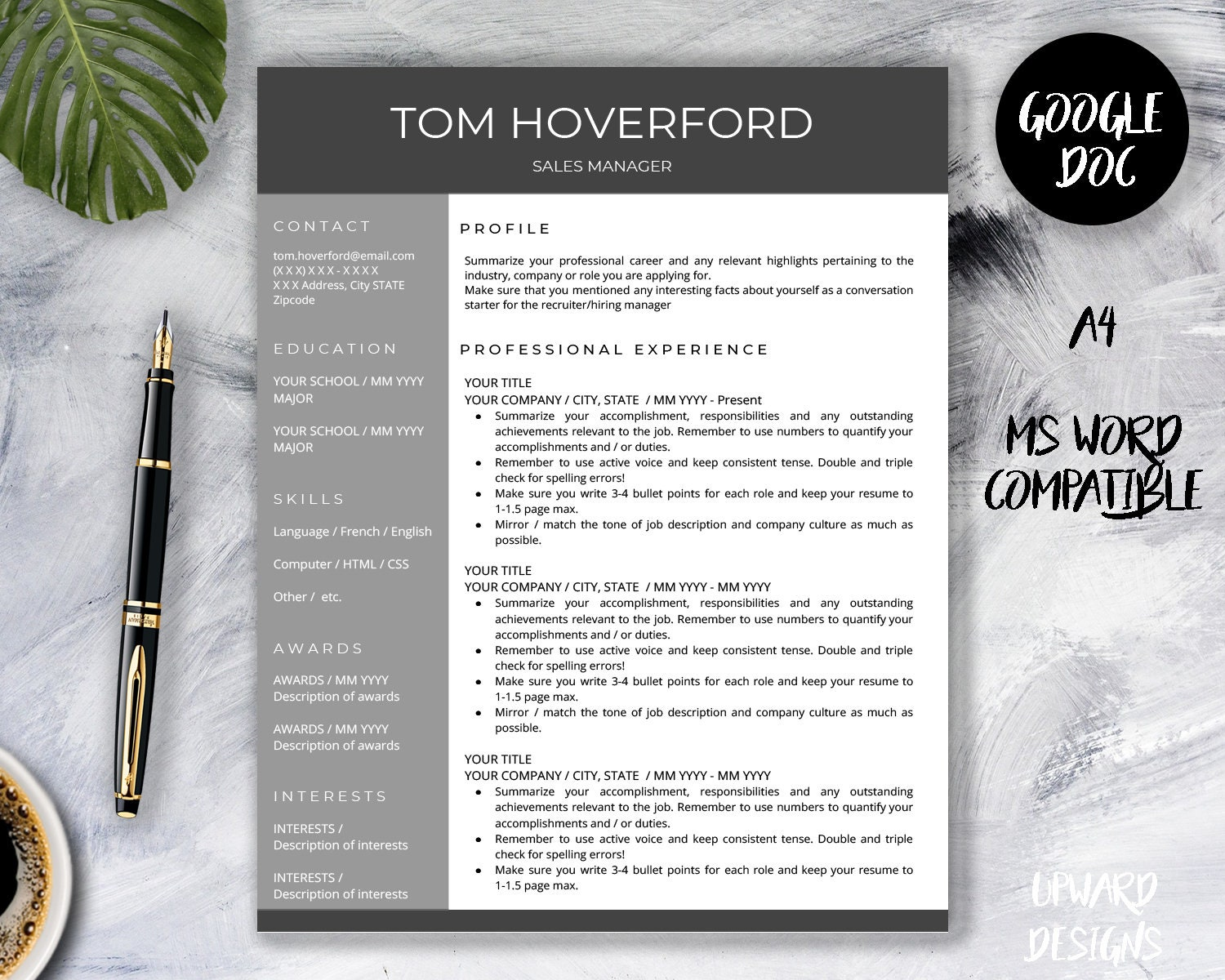 Google Docs Resume Template Professional Resume CV Template