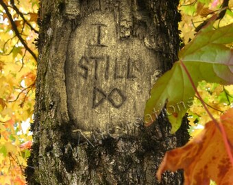 I Still Do, Digital tree carving with message, Instant Digital download, Fall Scene, Under 5 dollars, Anniversary, Colored Leaves, Gift
