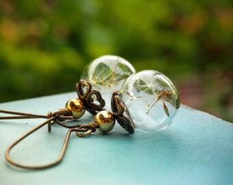 Real Dandelion Earrings, Glass Bubble Earrings, Boho Bride Earrings, Rustic Wedding Jewelry, Dandelion Wish Earrings, Romantic Gift for her