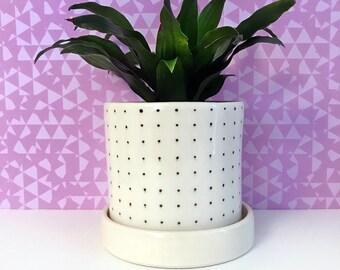 Pin Dot Planter-large