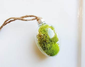 Moss Glass Ornament, Green Tree Ornaments, Stocking Stuffer, Tree Decorations, Nature Gifts, Holiday Decor, Botanical Decorations