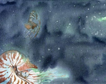 Archival Print from an Original Watercolor of Chambered Nautilus Swimming in an Indigo Blue Ocean with Manganese and Jade Green Sea Turtle