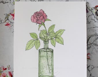 A4 Original pen and watercolour painting. Pink Rose Bud in a Bottle.