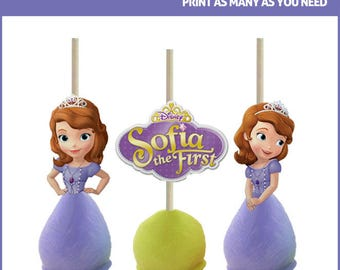 Sofia the First Cake Pop Toppers Printables -- DIGITAL -- Also works on cupcakes!