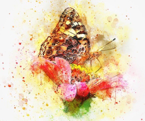 watercolor monarch butterfly with flower art print