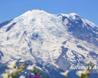 Mt Rainier in Spring