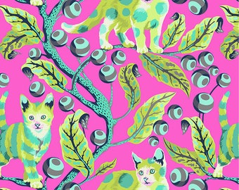 Tabby Road by Tula Pink for Free Spirit - Disco Kitty - Berrybird - 1/2 Yard Cotton Quilt Fabric 517